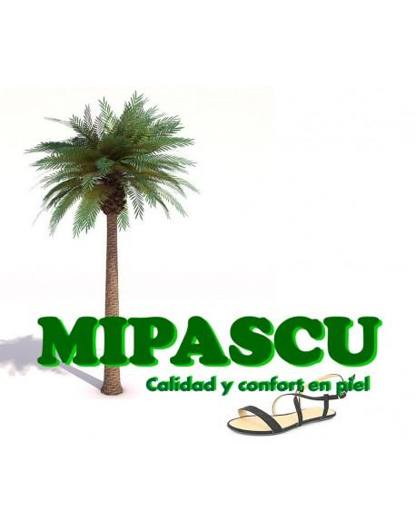 MIPASCU
