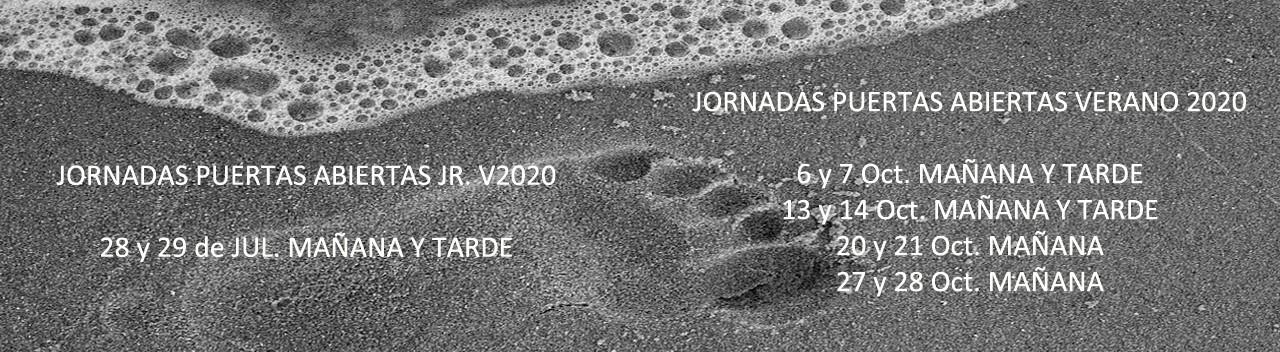 Jornadas V2020